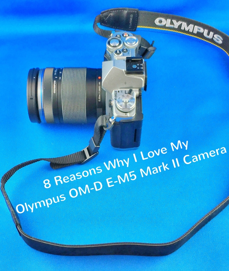 8 Reasons Why I Love My Olympus OM-D E-M5 Mark IICamera